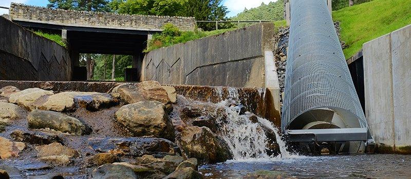 river ayr survey 01
